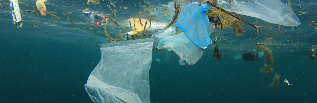 Plastics in the ocean: Why do they matter?